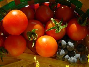 tomato & blueberry