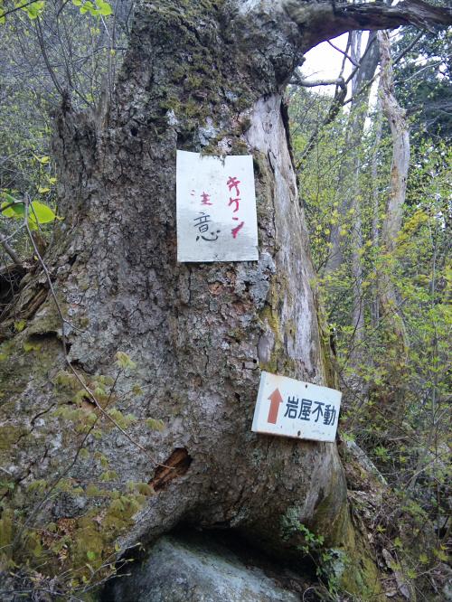 fukube014
