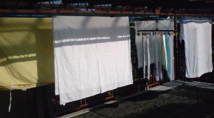 洗濯物in綿貫