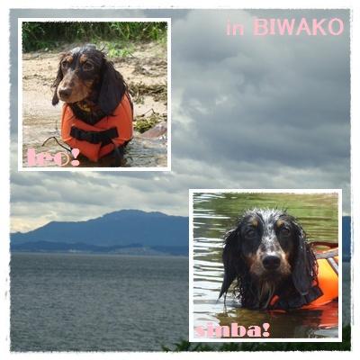 琵琶湖どっぼん3