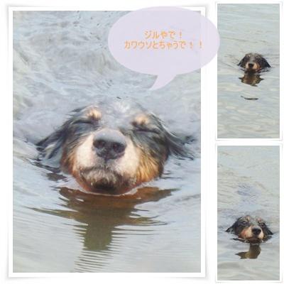 琵琶湖で遊ぶ11