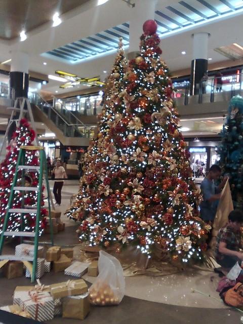 SMクリスマスツリー