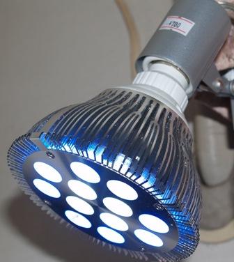 20101219-LED2.jpg