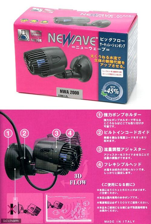・ニューウェーブNWA2000