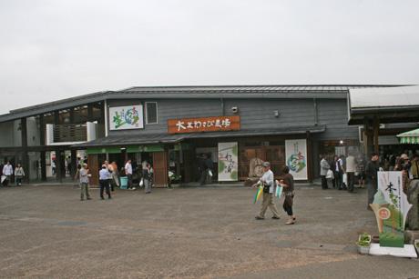 kitawasabi-2.jpg