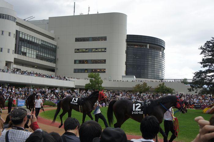 菊花賞2011-3