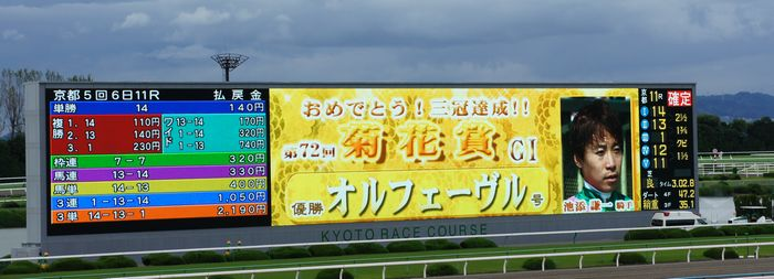 菊花賞2011-7