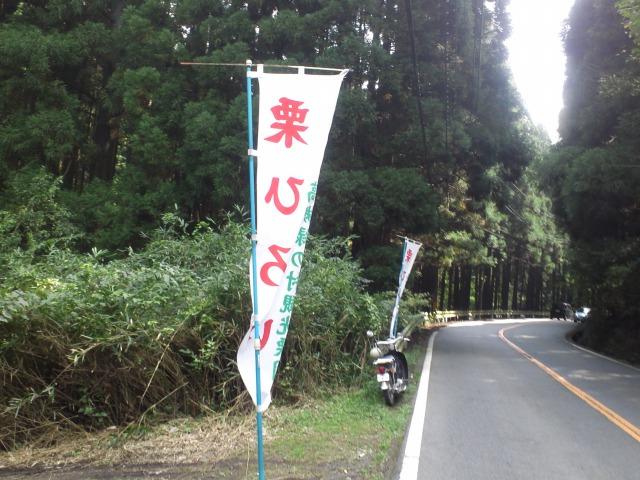 5_20111010183945.jpg