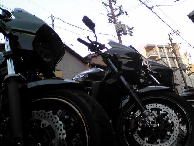 SH010029_20110116233901.jpg