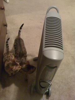 heater 2