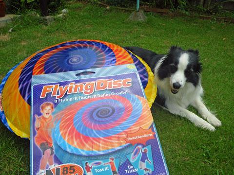 FlyingDisc