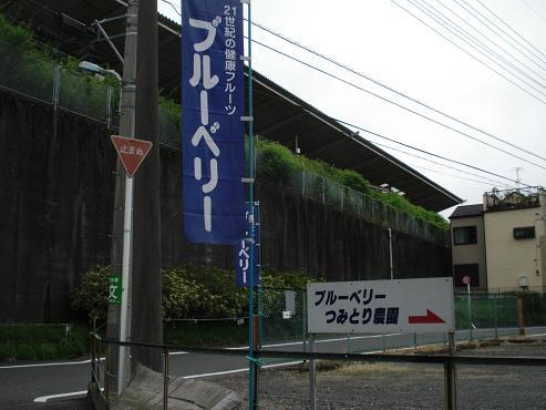 shinyuri1054.jpg