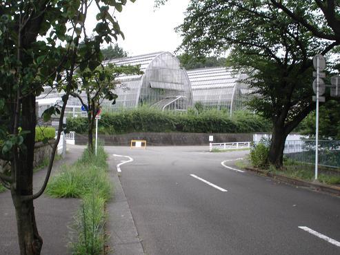 shinyuri1067.jpg