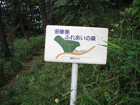 shinyuri1088.jpg