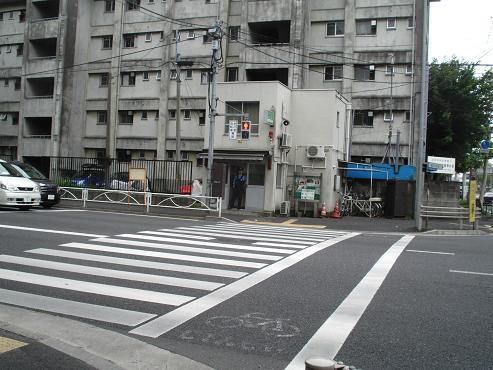 shinyuri1158.jpg