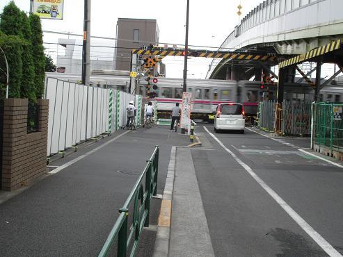 shinyuri1164.jpg