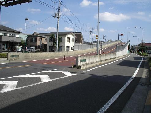 shinyuri1165.jpg