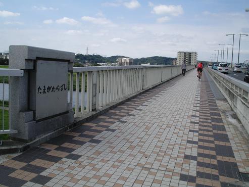 shinyuri1173.jpg