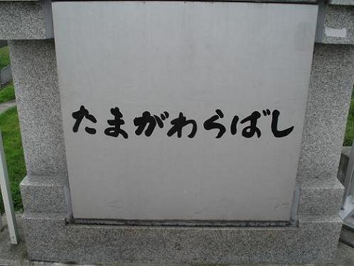 shinyuri1175.jpg