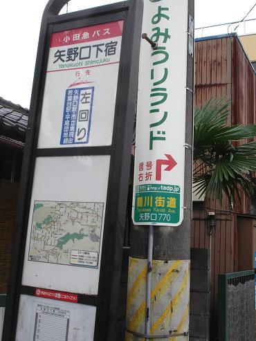 shinyuri1183.jpg