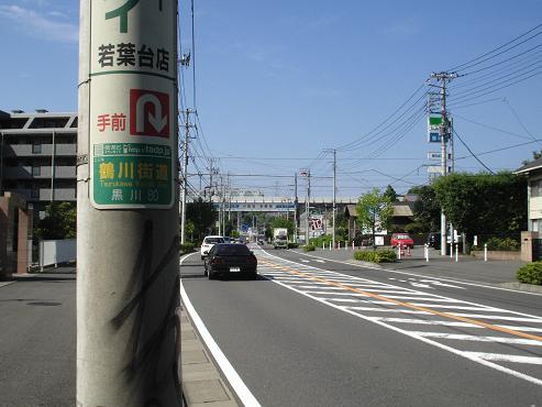 shinyuri1208.jpg