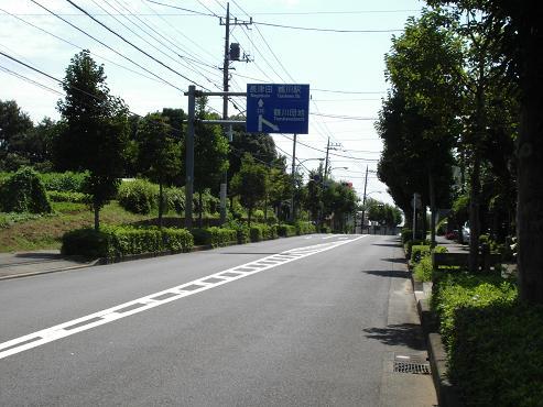 shinyuri1233.jpg