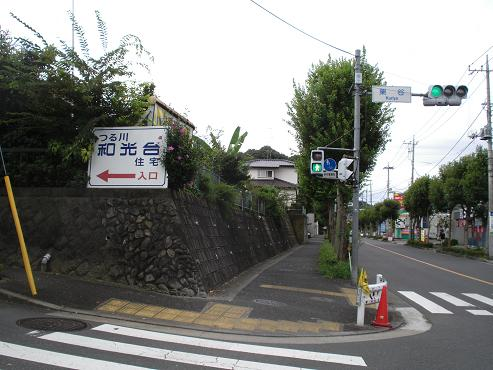 shinyuri1256.jpg