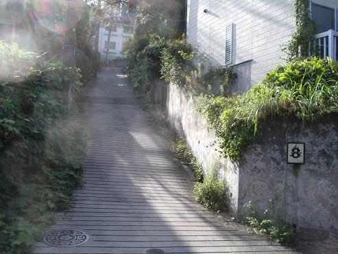 shinyuri1356.jpg
