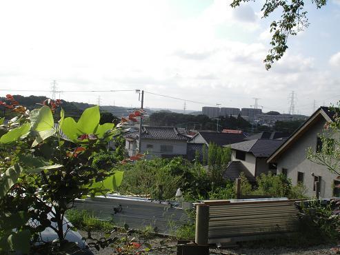 shinyuri1361.jpg