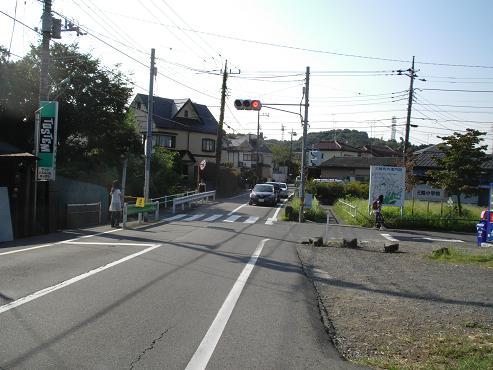 shinyuri1419.jpg