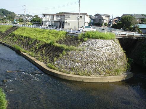 shinyuri1446.jpg