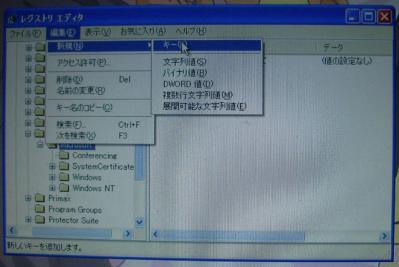 ms002.jpg