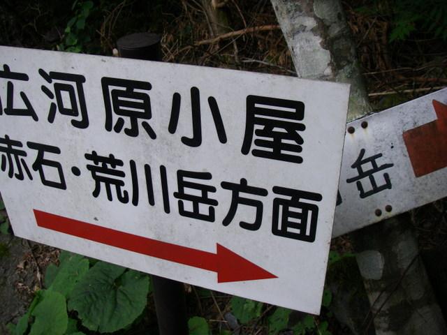 南アルプスー福川遡行(湯折~小渋川~福川~百間洞~赤石岳~椹島H19・8・28~30) 039