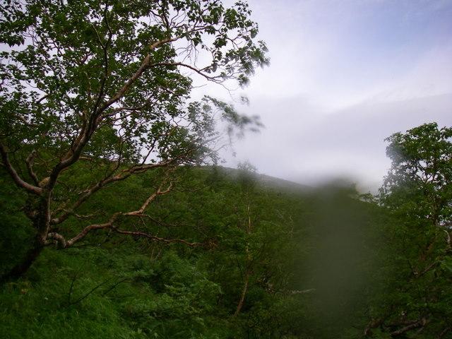 南アルプスー福川遡行(湯折~小渋川~福川~百間洞~赤石岳~椹島H19・8・28~30) 090
