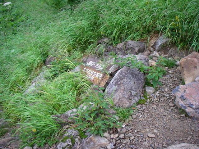 南アルプスー福川遡行(湯折~小渋川~福川~百間洞~赤石岳~椹島H19・8・28~30) 102