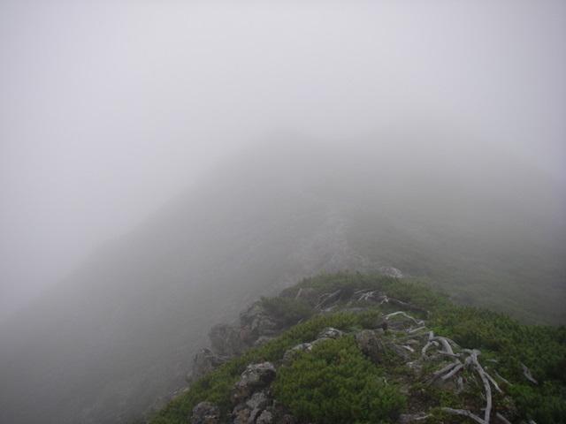 南アルプスー福川遡行(湯折~小渋川~福川~百間洞~赤石岳~椹島H19・8・28~30) 117