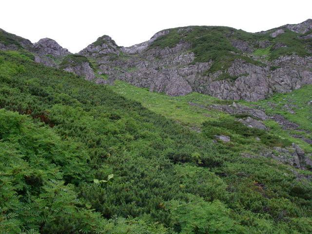 南アルプスー福川遡行(湯折~小渋川~福川~百間洞~赤石岳~椹島H19・8・28~30) 137