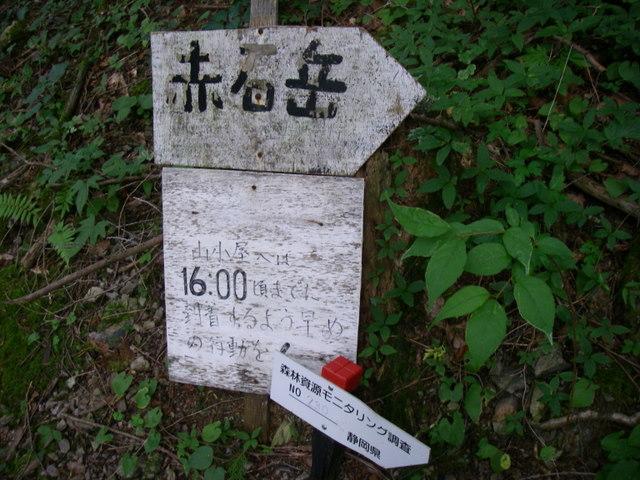 南アルプスー福川遡行(湯折~小渋川~福川~百間洞~赤石岳~椹島H19・8・28~30) 159