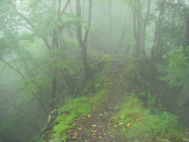 奥多摩ー天目山~天祖山H20.9.20 004