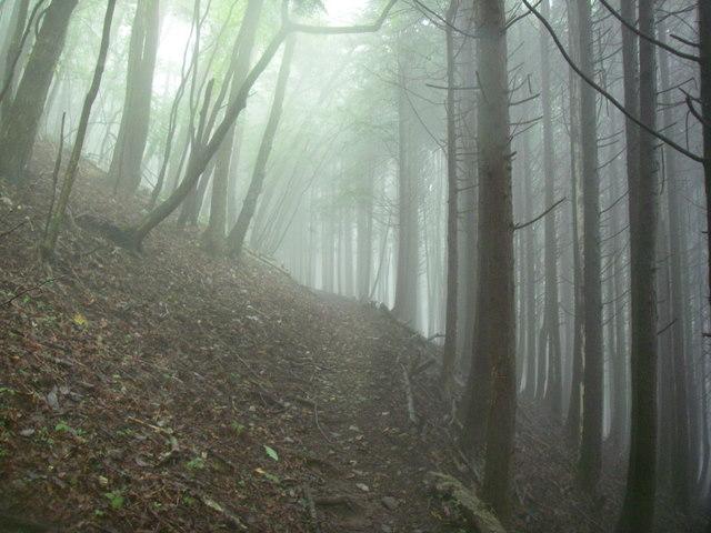 奥多摩ー天目山~天祖山H20.9.20 002