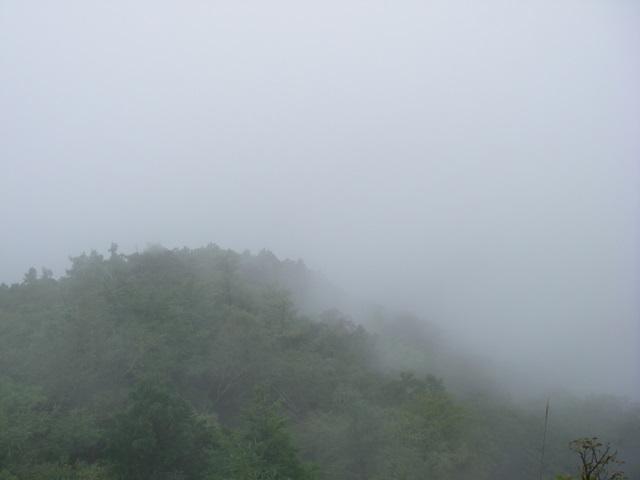 奥多摩ー天目山~天祖山H20.9.20 018