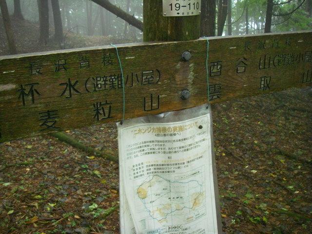 奥多摩ー天目山~天祖山H20.9.20 015