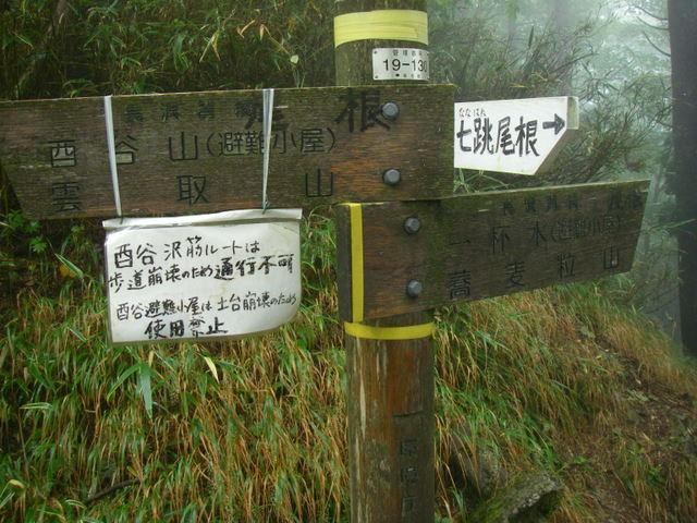 奥多摩ー天目山~天祖山H20.9.20 023