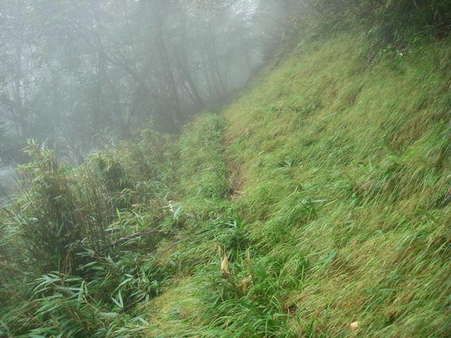 奥多摩ー天目山~天祖山H20.9.20 033