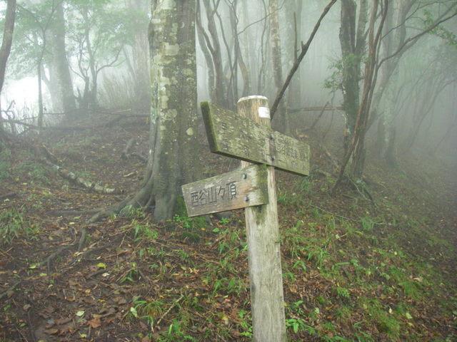 奥多摩ー天目山~天祖山H20.9.20 031