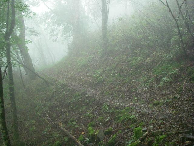 奥多摩ー天目山~天祖山H20.9.20 030