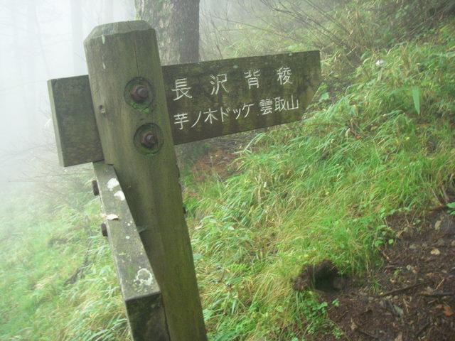 奥多摩ー天目山~天祖山H20.9.20 036