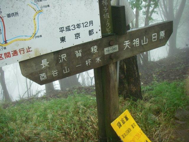 奥多摩ー天目山~天祖山H20.9.20 041