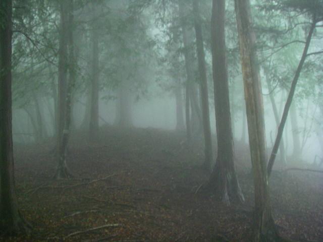 奥多摩ー天目山~天祖山H20.9.20 056