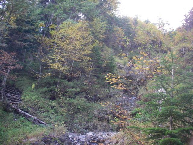 塩見岳~雪投沢~東俣(H19.10.6~8) 025